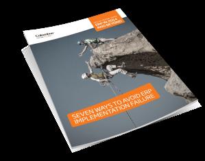 Avoiding ERP Implementation Failure